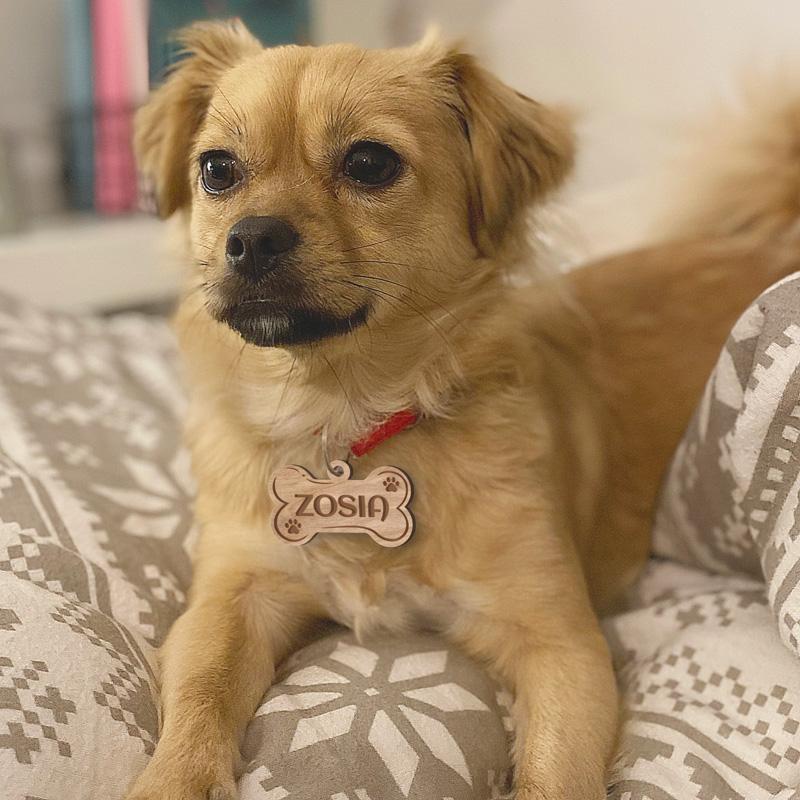 Zawieszka drewniana psia kość na obrożę dla psa z jego imieniem.