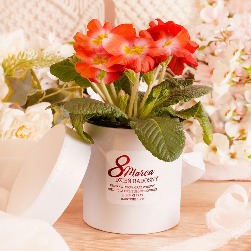 Perłowy flower box na dzień z życzeniami na dzień kobiet, które znajdują się na etykiecie.
