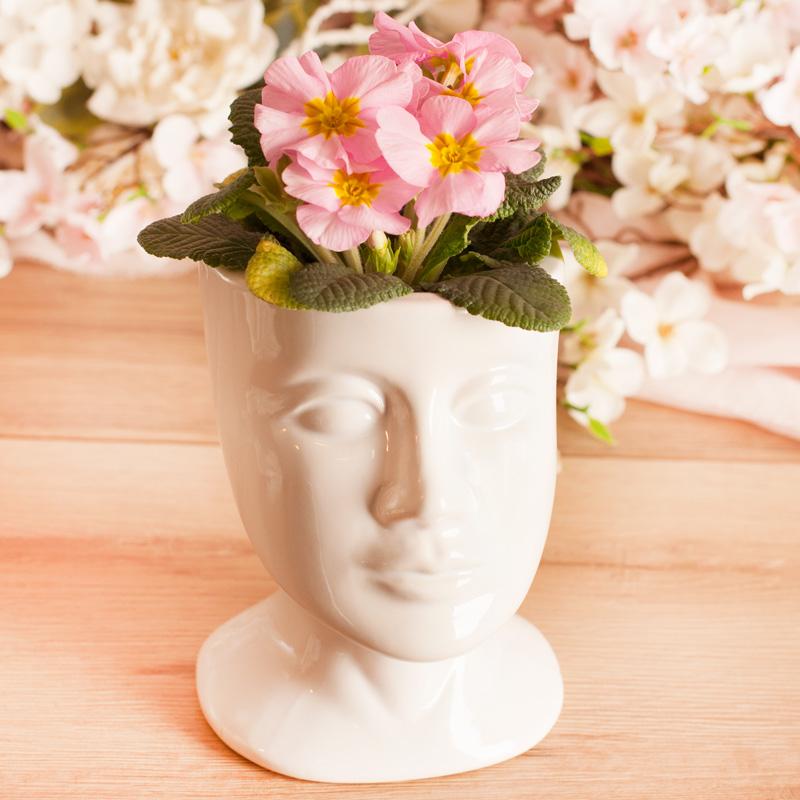 Doniczka na kwiaty w kształcie ludzkiej głowy.
