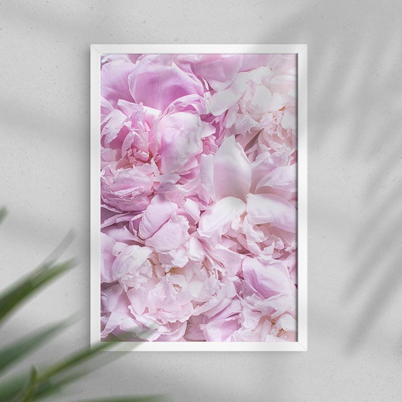 Plakat na ścianę z kwiatami piwonii na całej powierzchni w dwóch formatach do wyboru a3 lub a4 oraz z ramą czarną lub białą.